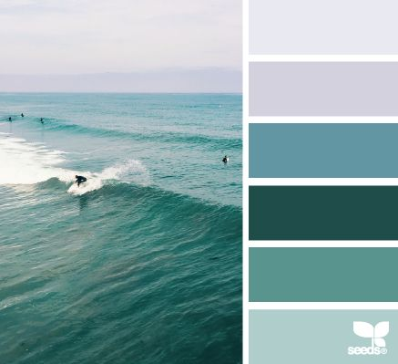 Beauty of surf & color