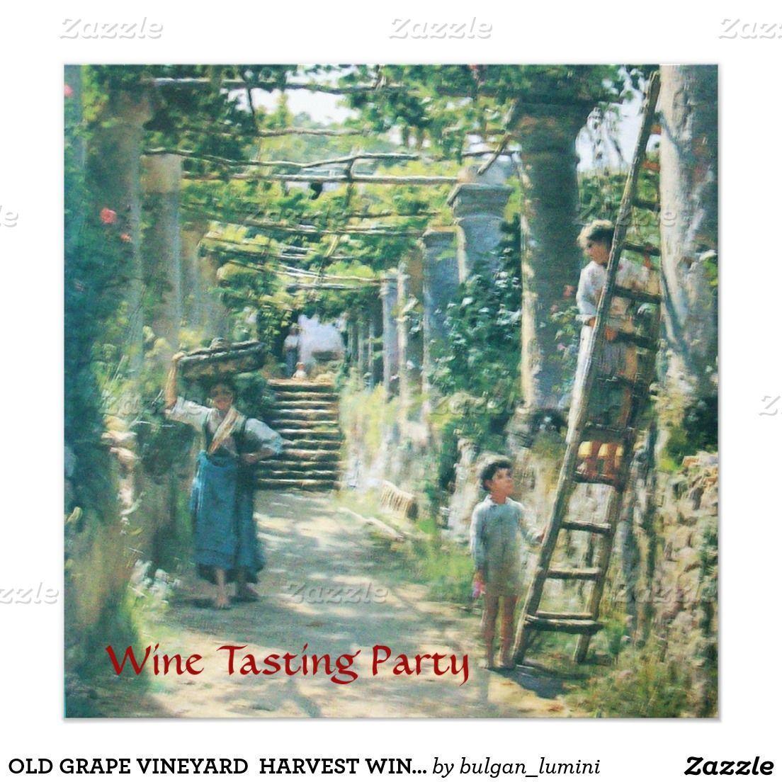 OLD GRAPE VINEYARD  HARVEST WINE TASTING PARTY INVITATION