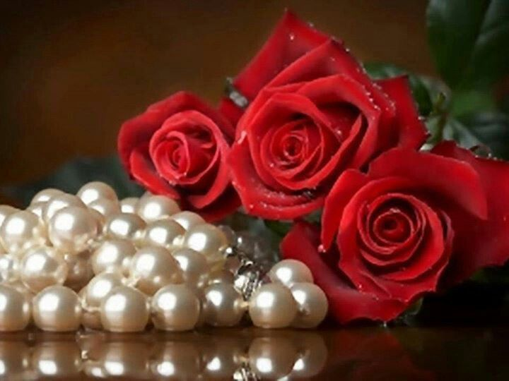 Red roses with pearls | Rose, Single flower, Red flowers