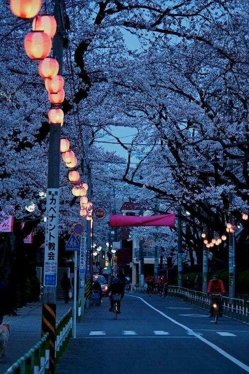 Blue hour, Tokyo