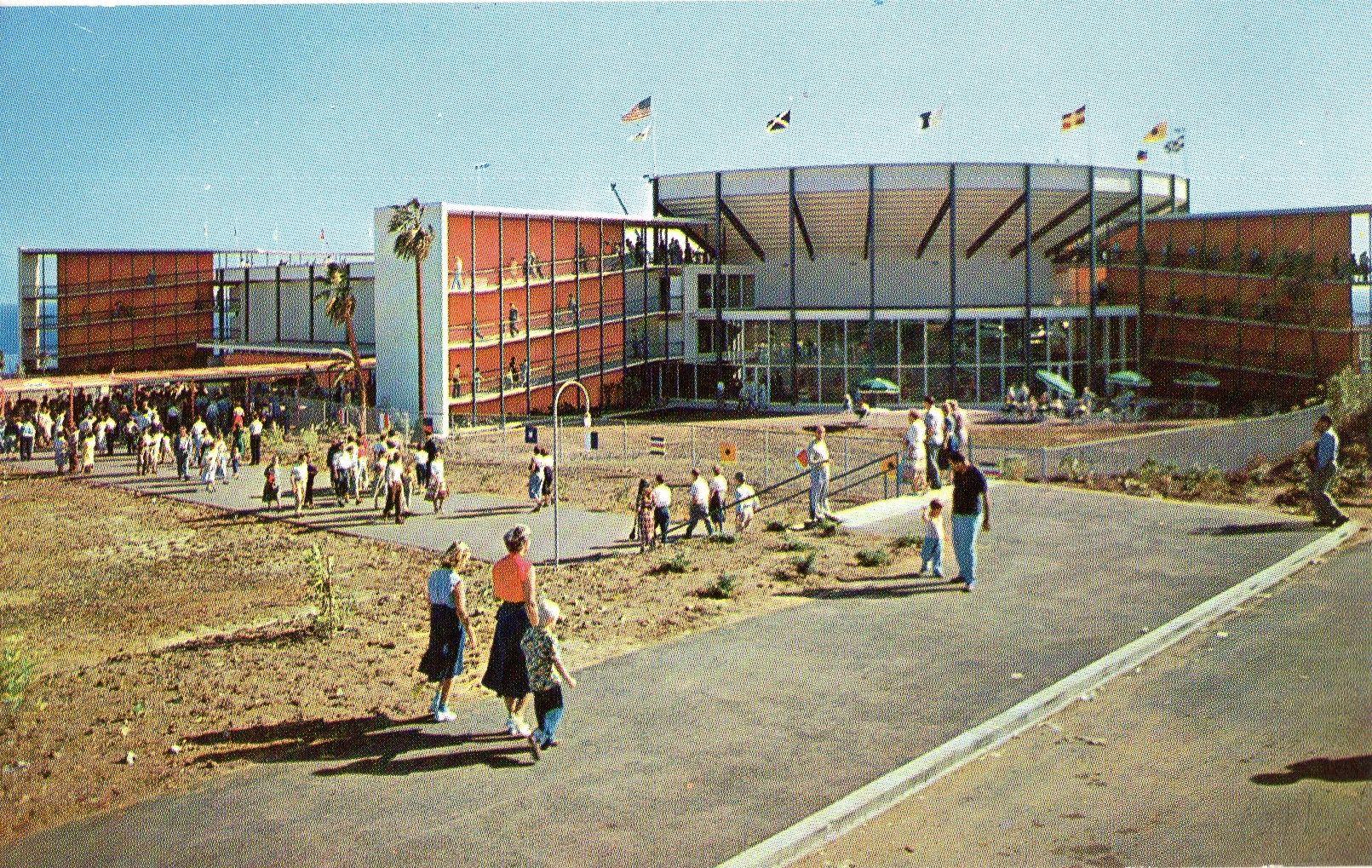 1950 S Marineland Postcard Hagins Collection California Postcard Postcard Old Postcards