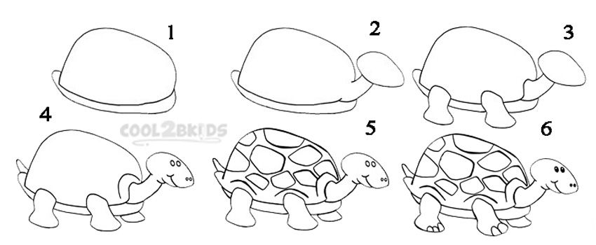 How To Draw a Turtle Step by Step Drawing Tutorial with Pictures