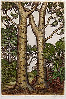 Mary Taylor Kauri Trees Print Kauri Tree New Zealand Art Tree Painting Please bookmark this domain and unblock on us adblock!!! kauri tree new zealand art tree painting