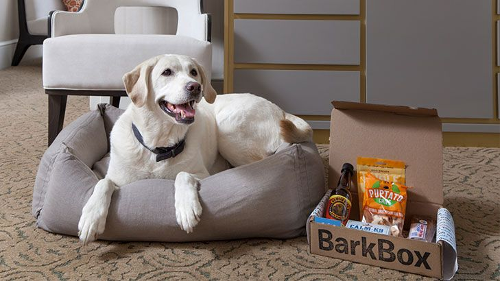 Gooddog By The Benjamin Recently Named One Of Top Three Pet Friendly Hotels