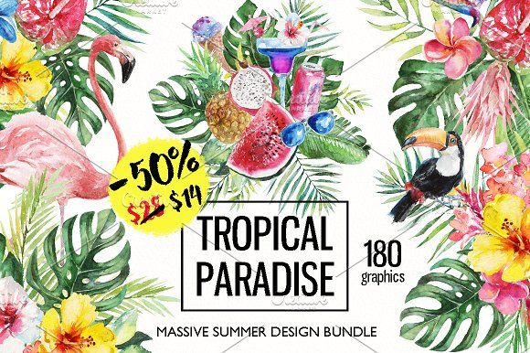 50 Off Tropical Watercolor Design Set Of 180 High Quality