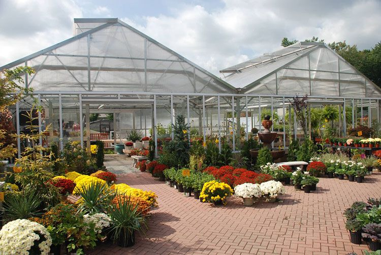 Matterhorn Greenhouse At Richfield Farms Clifton Nj With Images