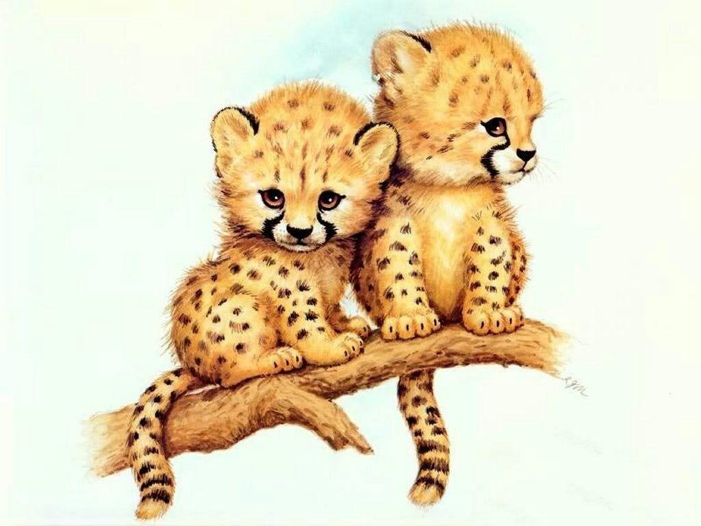 Animated Cheetah Wallpaper pinh on ruth morehead robin james l k powell   cheetah