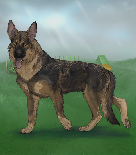 Design A GSD In Hold Contest Thread At Alacrity Virtual Dog Game Forum Join Now
