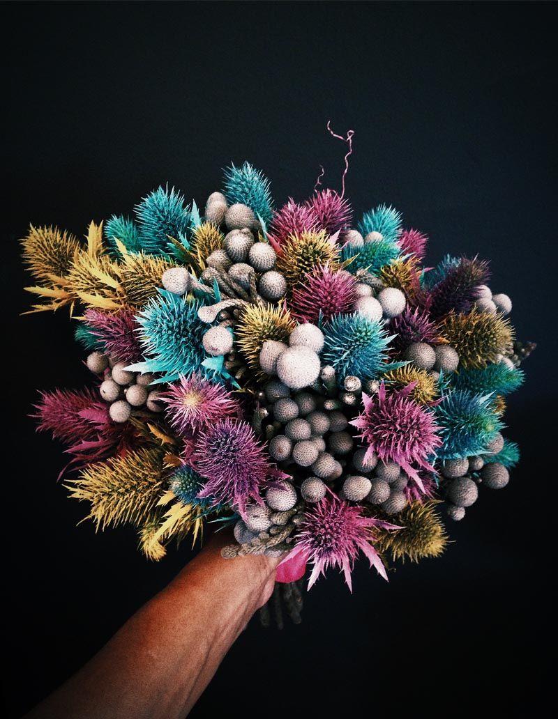 Gang and the Wool / Florist Manuela Sosa Barcelona