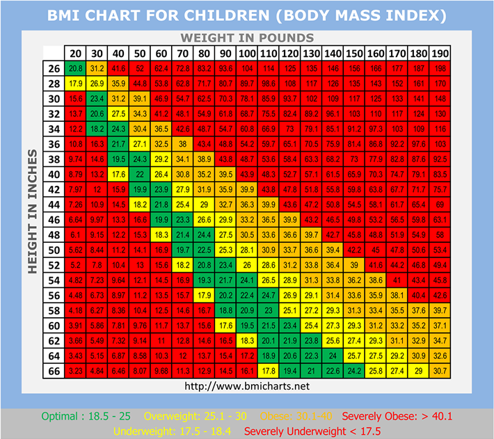 Kids bmi chart fresh start exercise charts for kids exercise