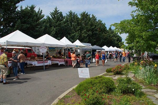 Saturday Growers Market By Mick Anderson Grants Pass Oregon