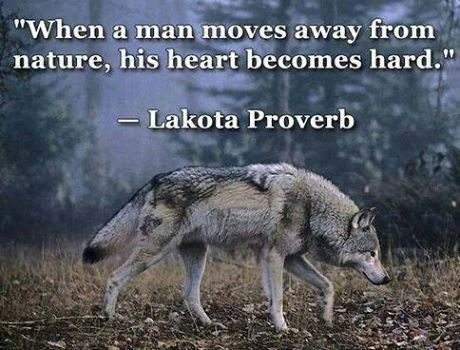 Petra U Luca Shared Pro-Wolf North West Photo