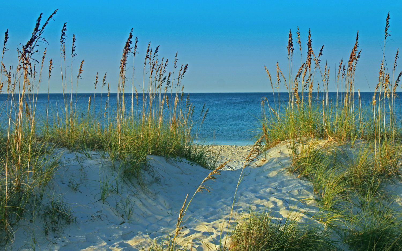 Beach Deals new look!