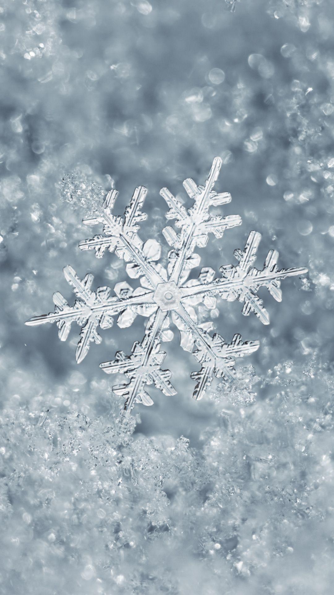 Ice Snowflake iPhone 7 Plus Wallpaper | Winter Wallpaper ...