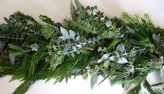 Fresh Christmas Holiday Greenery Garland With Cedar Fir And