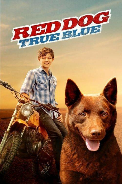 Red Dog True Blue In 2020 Movies Favorite Movies True Blue