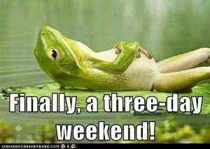 3 Day Weekend Frog Via Www Icanhascheezburger Com Funny Frogs Weekend Humor Stupid People