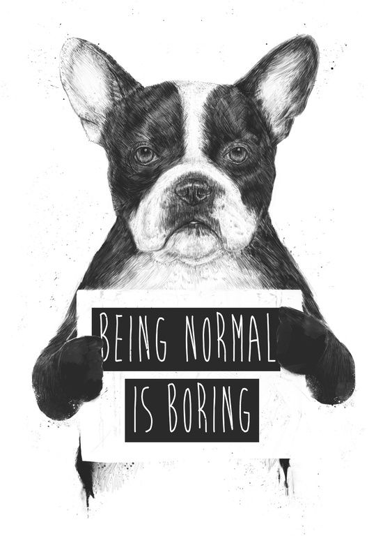 Modern quirky art for your gallery wall being normal is boring art print by