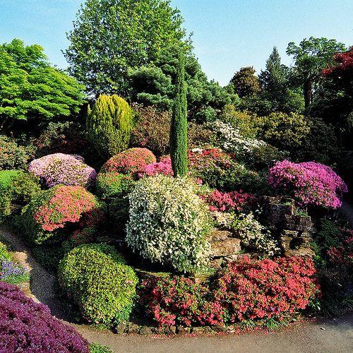 Colorful Rock Garden At Leonardslee Gardens West Sussex Uk Flowering Kurume Azaleas In May 12 Of 14 Rock Garden Rock Garden Design Landscaping With Rocks
