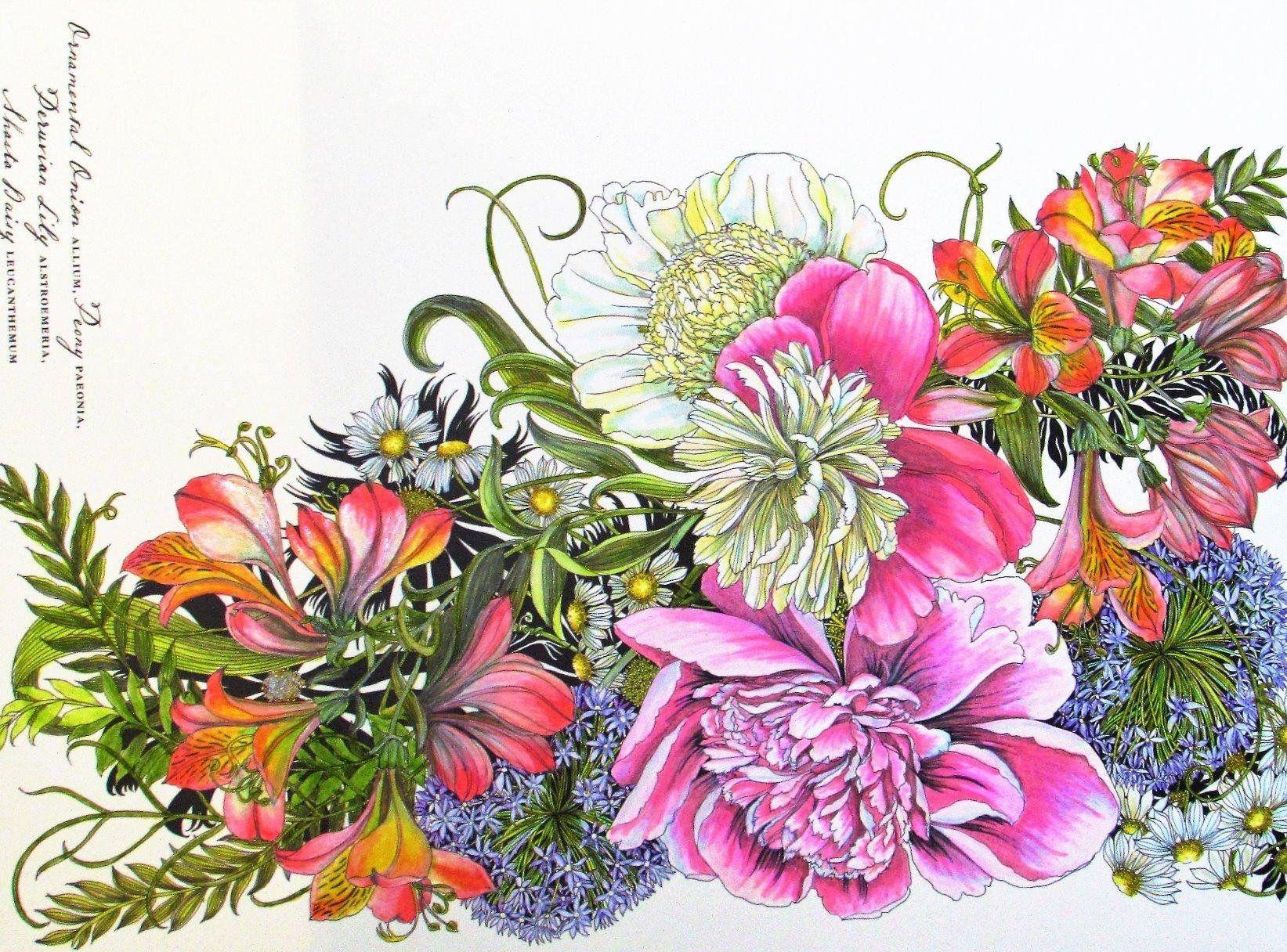 Color book for me - Floribunda A Flower Coloring Book Leila Duly 9781780677682 Amazonsmile Books