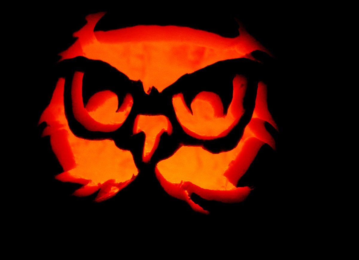 owl pumpkin pattern carving | pumpkin stencils owl pumpkin stencil ...