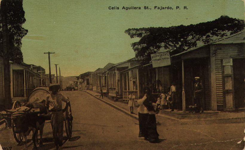 Fajardo, Puerto Rico - East Bazaar of Don Fernando Pascual, Celis Aguilera Street