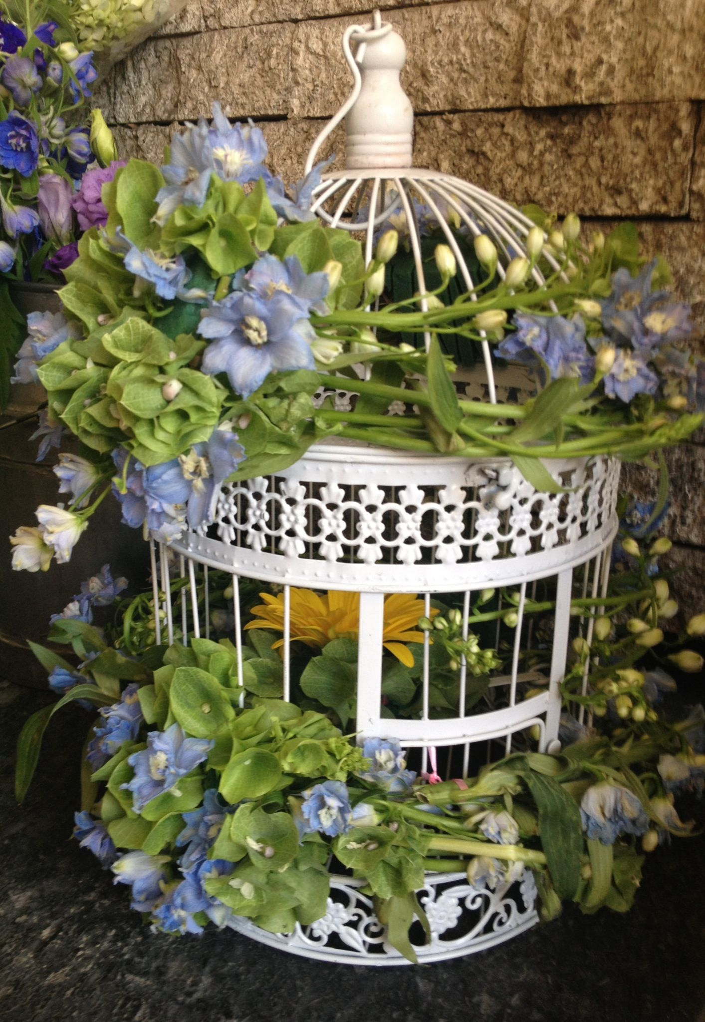 Jaula Con Flores Pretty Birdsclay Flowersbirdcage