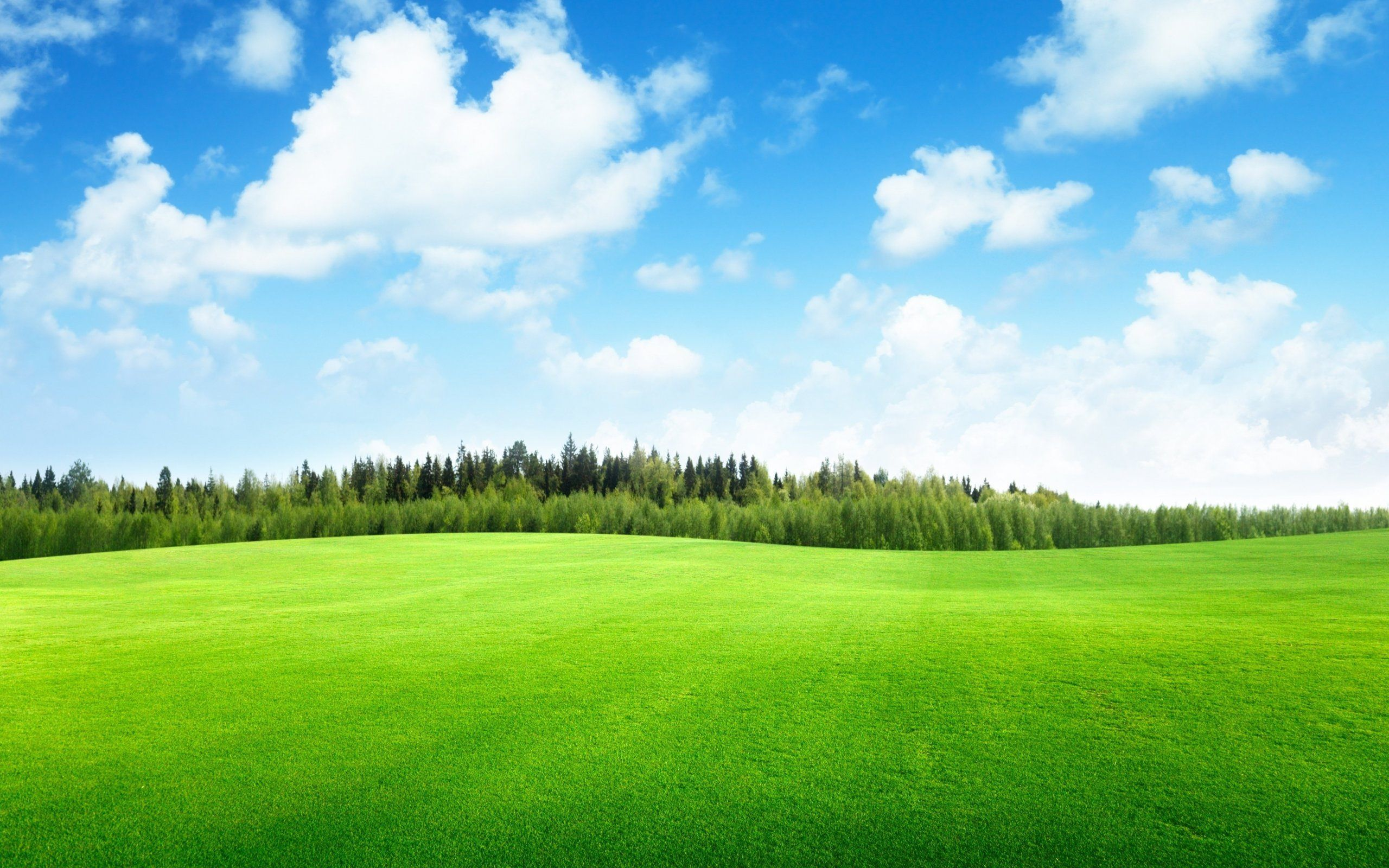Beautiful Green Landscape Wallpaper  Beautiful Green Landscape