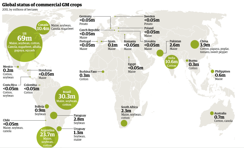 Top 7 Genetically Modified Crops Global Map Genetically Modified Map