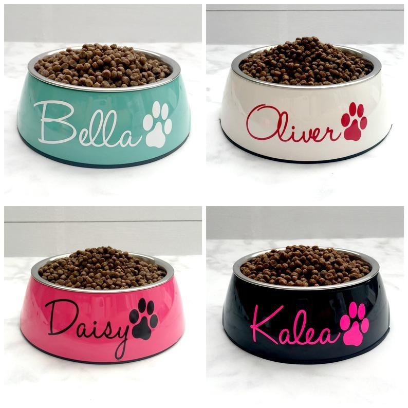 Paw Print Svg Food Bowl Pet Bowl, Custom Dog Bowl Monogram Pet Svg Water Bowl Personalized dog Bowl