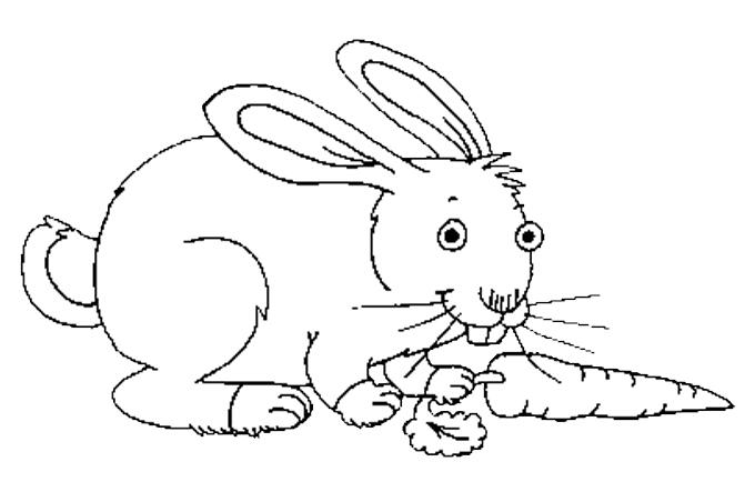 صورة أرنب يمسك بجزرة ليبدأ أكلها مفرغة Animals Character Fictional Characters