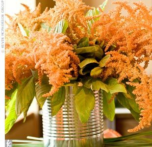 Orange Astilbe In Cans Unique Flowers Orange Flowers Succulent Pots