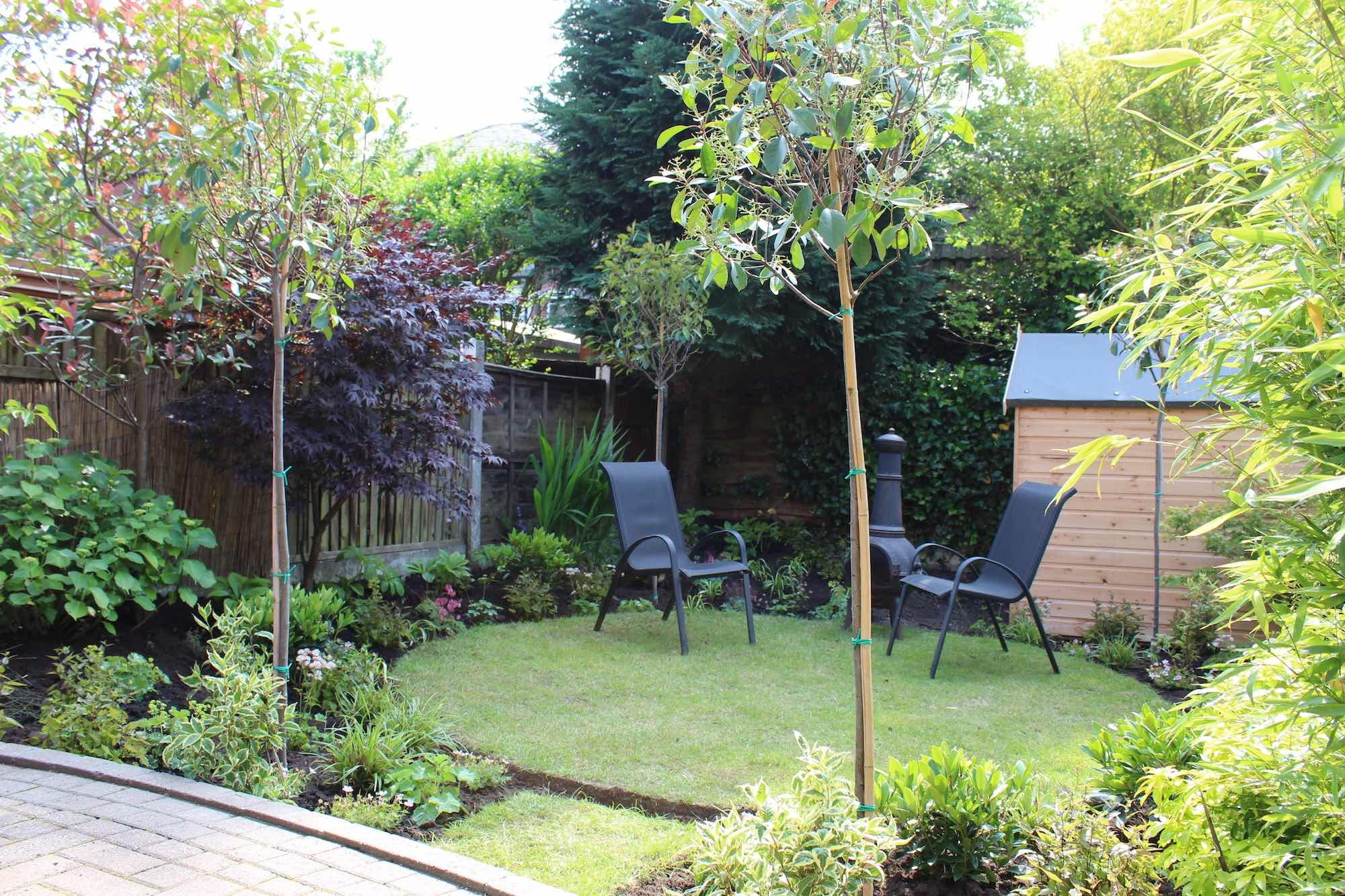 This small overlooked garden was transformed by Garden Ninja into