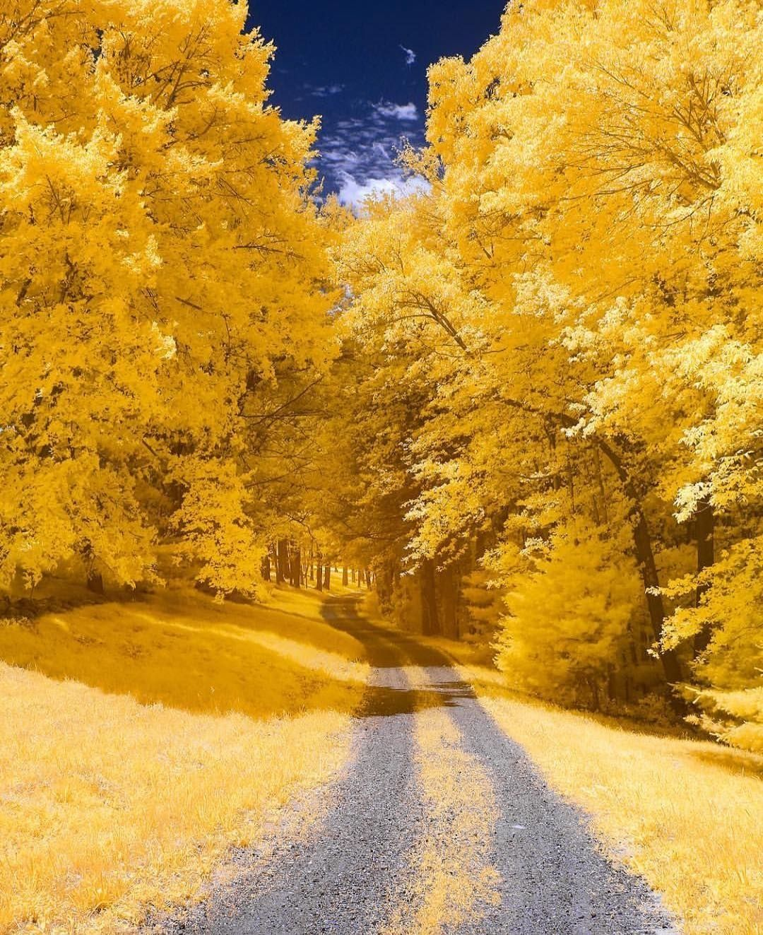 Dirt Road In Andover Autumn Landscape Nature Photography Autumn Scenery