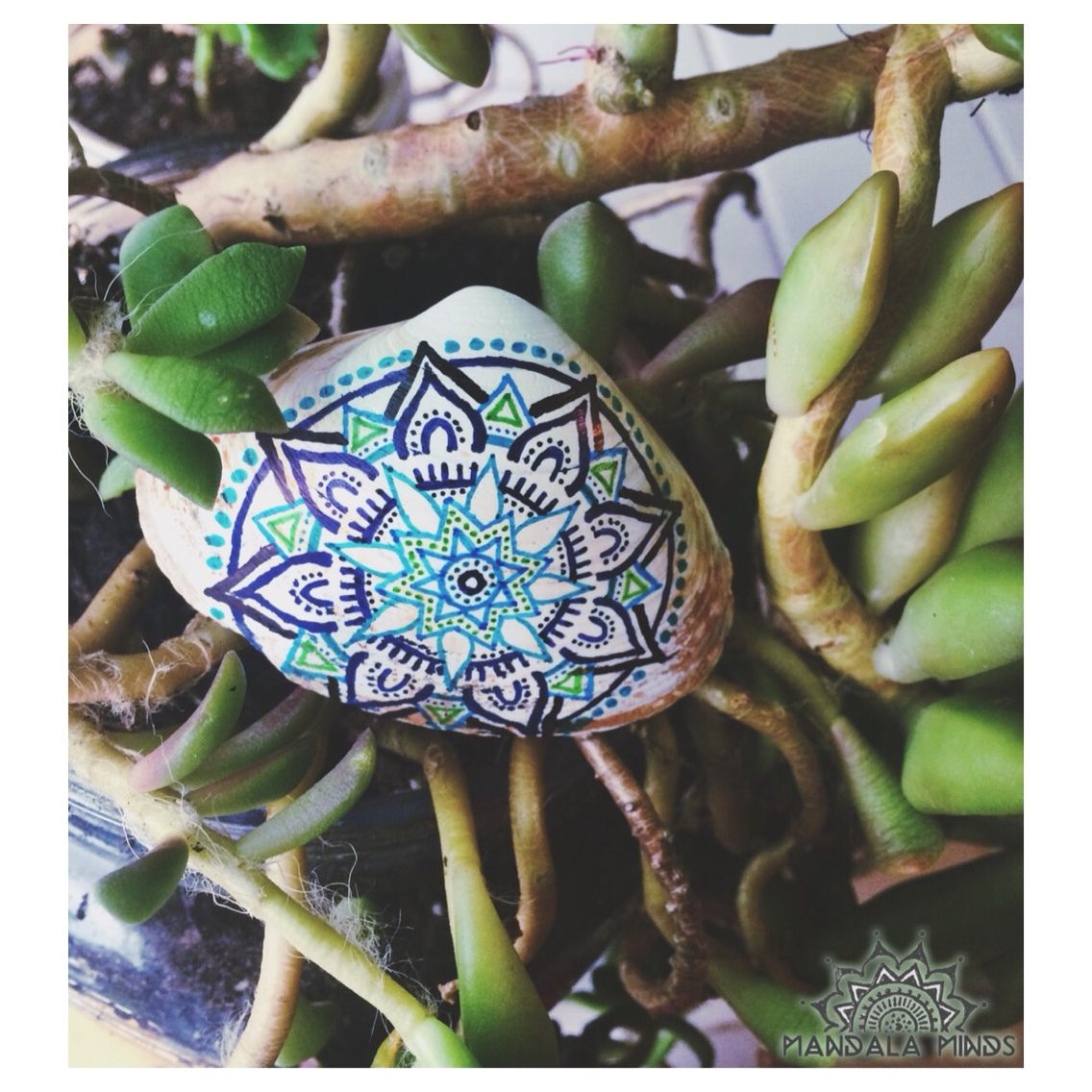 Hand Painted Mandala Seashell ⋆ Mandala Minds  3ce370f234d