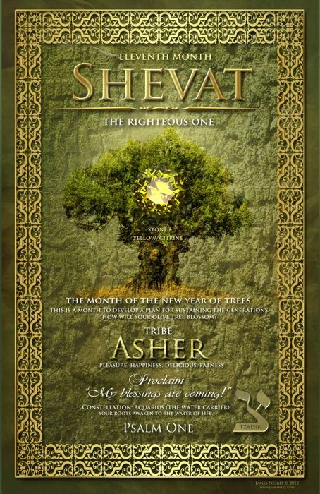 The 11th Month Of The Hebrew Calendar Shevat Prophetic Art