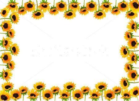 girasoles | bordes y tableros | Pinterest | Girasoles, Etiquetas y ...