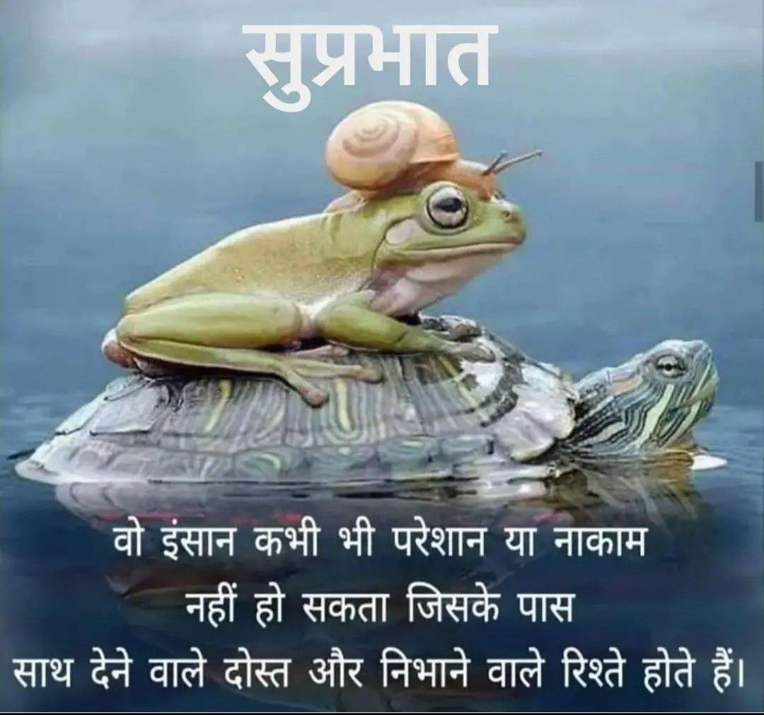 Pin by seema yadav on Good morning wishes in 2020 | Good ...