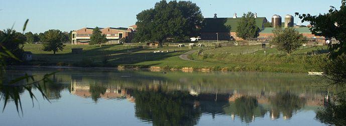 North Carolina State University College of Veterinary