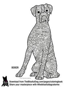 And The Boxer Coloring Book Page This Is A Harder Onehehehe