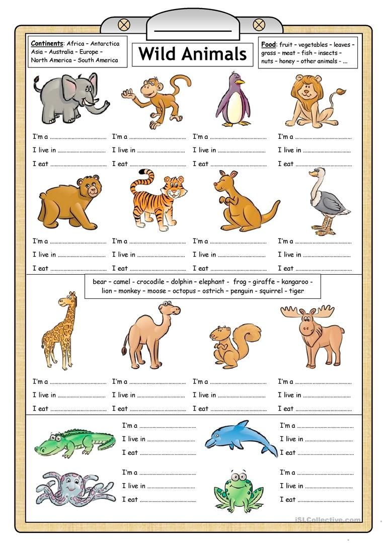 80 Free Esl Wild Animals Worksheets For Kindergarten Pdf
