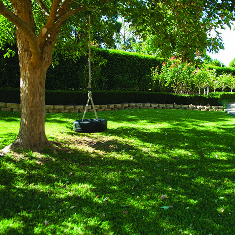Magnificent Want Vibrant Green Lawn All Year Round Sydney Lawn And Turf Gmtry Best Dining Table And Chair Ideas Images Gmtryco
