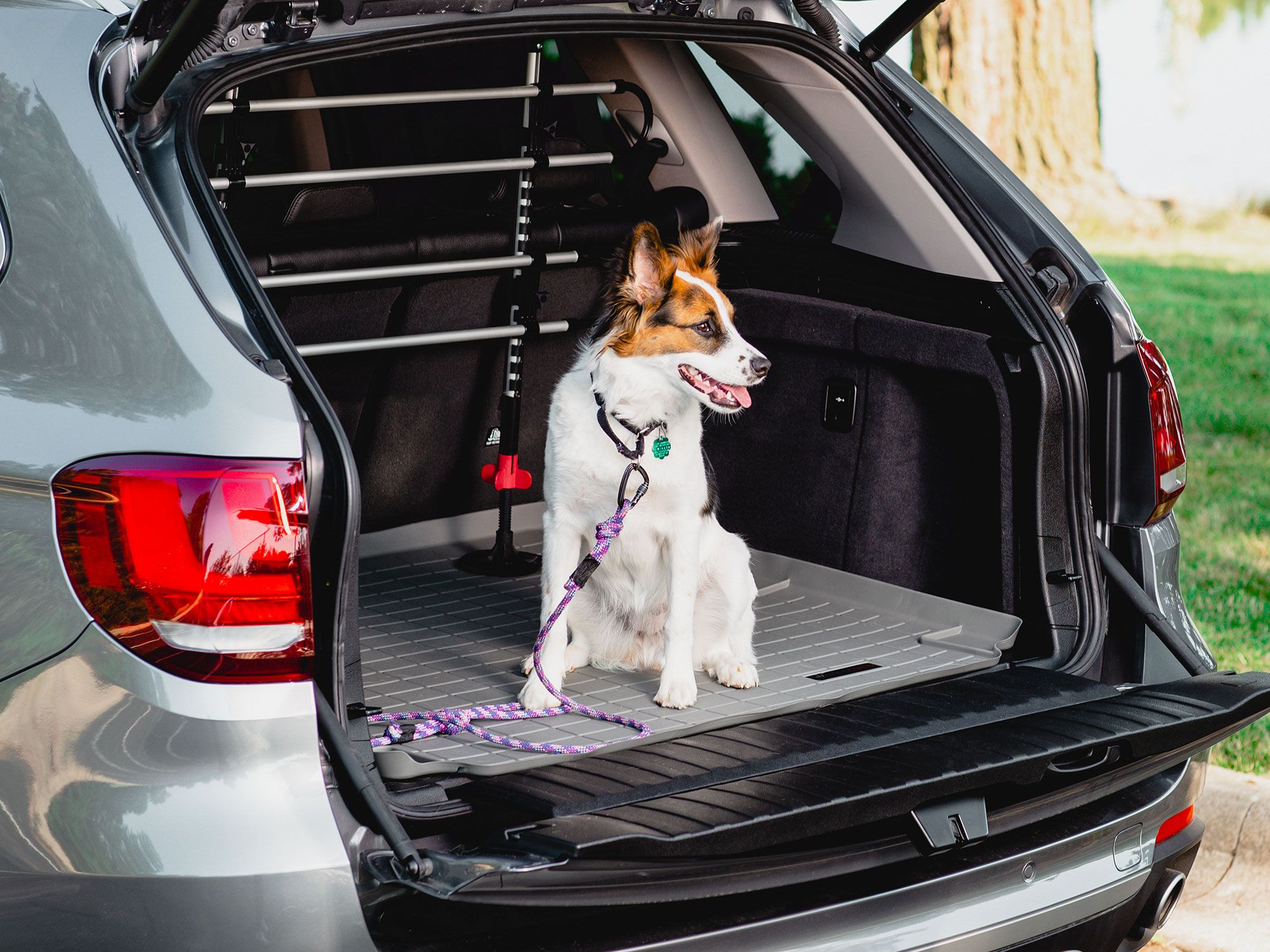 Pin on WeatherTech Pet for Your Vehicle