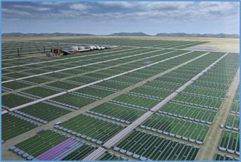 Diseño de Foto-Bioreactores para el Cultivo Micro Algas Oleaginosas Parte 1. Teoría y Generalidades Reinhardt Acuña Torres Introducción  1- Planta Productora de Biocombustibles A partir de Mi...