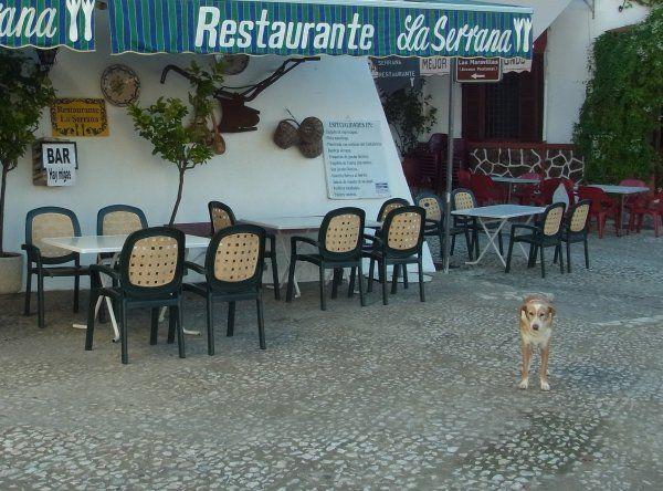 ふらっとスペイン 南西部の旅*アラセナ | ギャザリー
