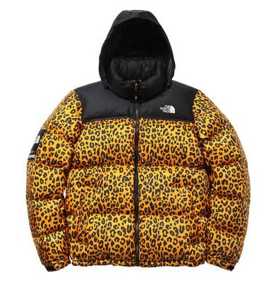 2efab14bd Cheetah print bubble coat, supreme | Wardrobe in 2019 | North face ...