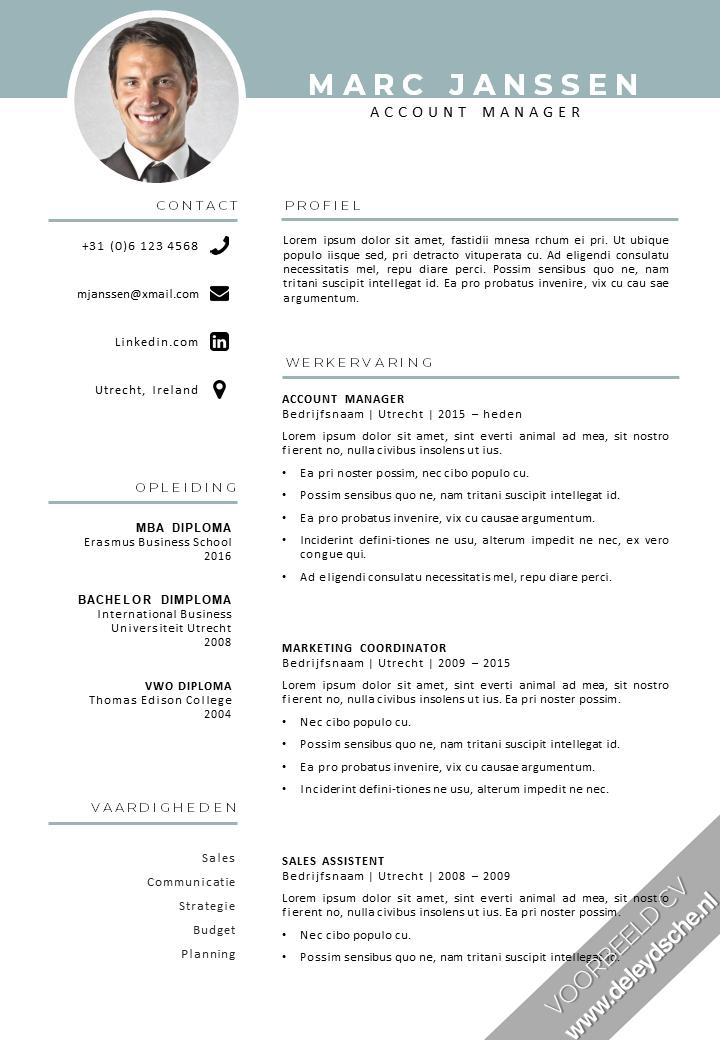 Voorbeeld CV 31 in 2020 Cv layout, Infographic cv, Cv