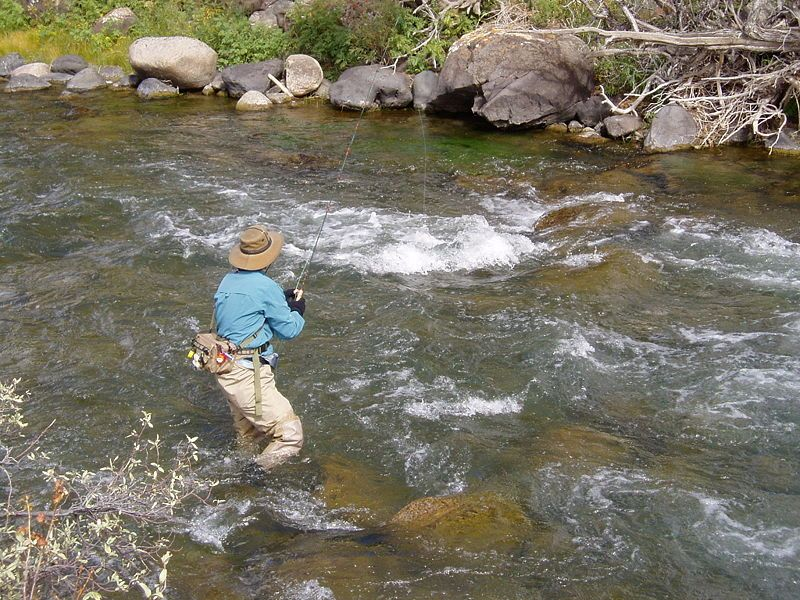 Google Image Result for http://flyfishing.thefuntimesguide.com/images/blogs/dry-fly-fishing-running-water.jpg