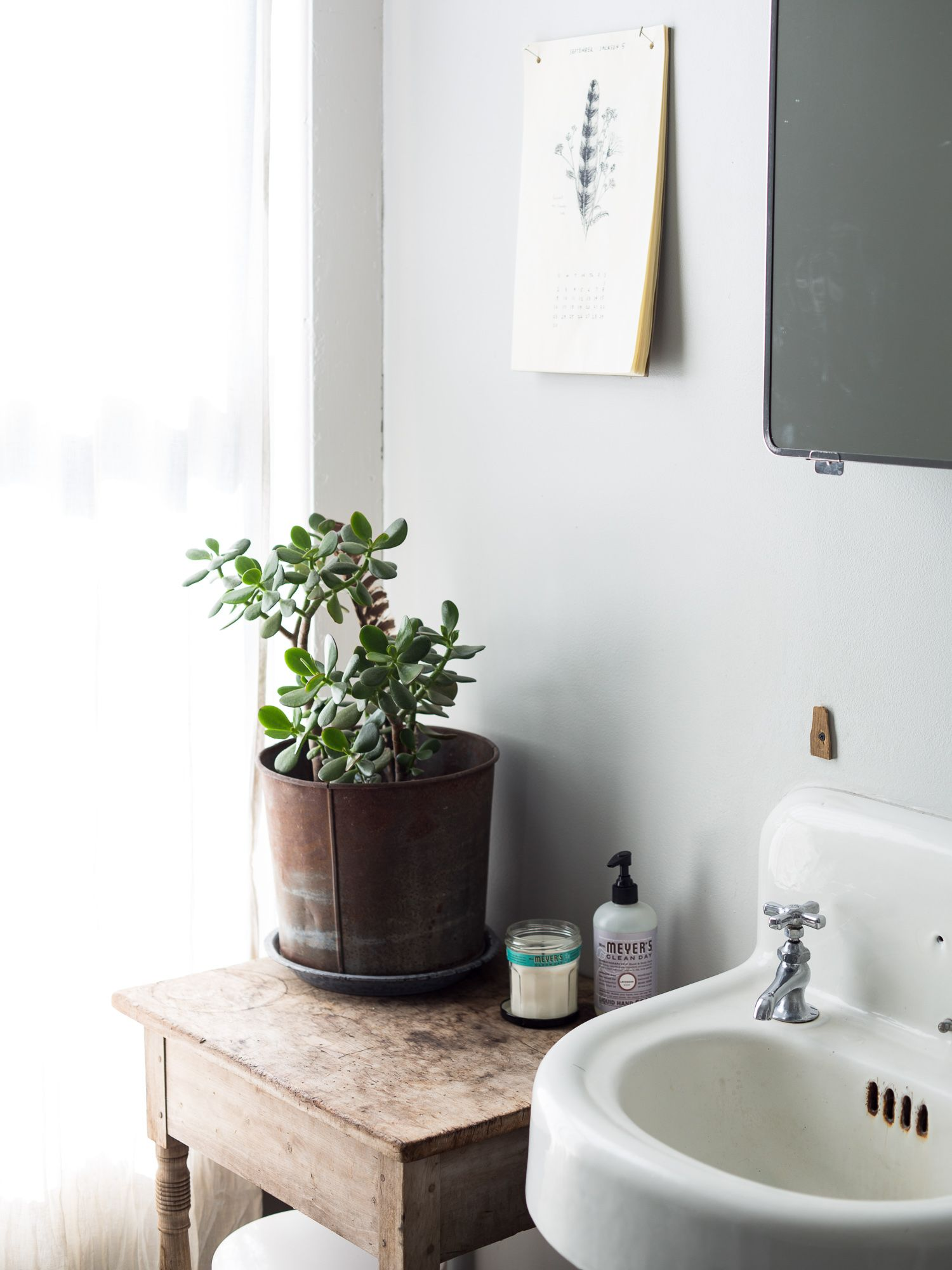 Bathroom Decor Indoor Plant Succulent Home Decor House Plant Care Beautiful Bathrooms Bathroom Inspiration