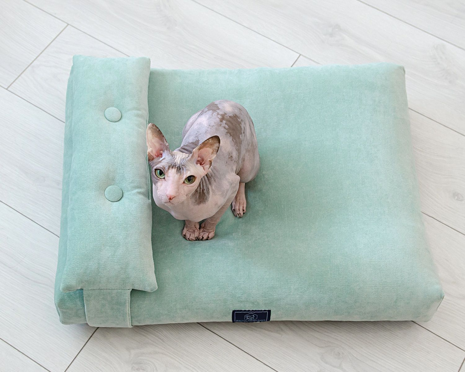 Cat pillow for stylish home Removable mint cover with